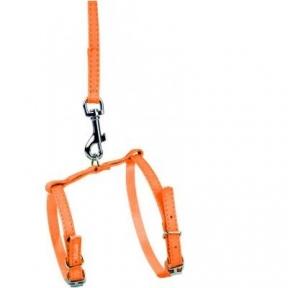 Collar Glamour шлея и поводок оранжевый 25-35см/35-43см