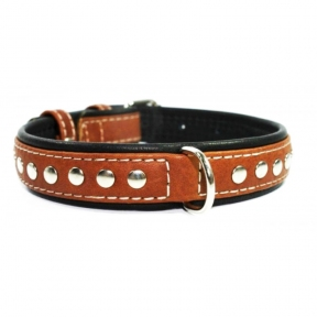 Collar Soft с металлическими украшениями коричневый верх 15мм/27-36см