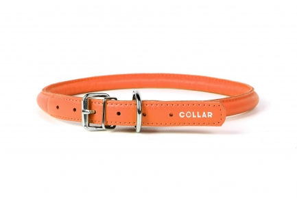Collar Glamour ошейник для длинношерстныобак оранжевый 6мм/17-20см
