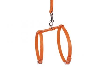 Collar Glamour шлея c поводком оранжевый 20-30см/30-40см